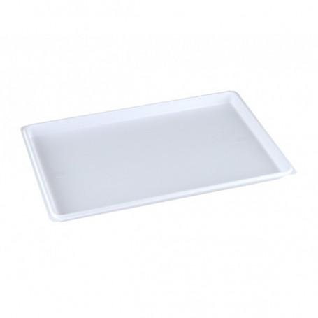 Plateau plastique blanc à usage unique nu