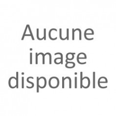 Dentasept 3H RAPIDE - Bidon de 5L